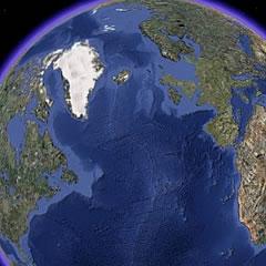 Googlovo orodje za nadzor nad izginjanjem gozdov