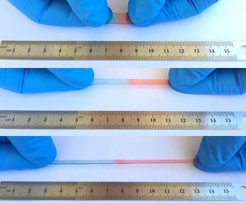 Novo-razviti material se lahko razteguje do neverjetnih dolžin. Vir: Ameriško kemijsko društvo